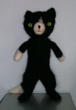 balack cat