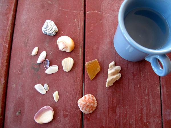5:1:shells