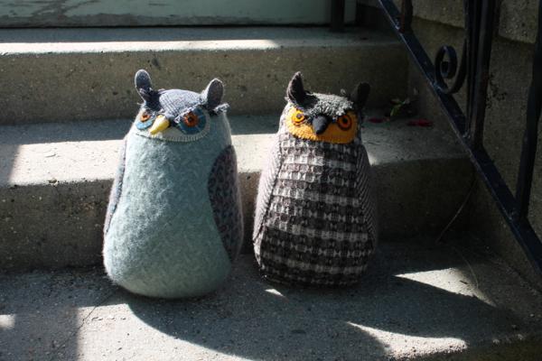 6:19:grey owls