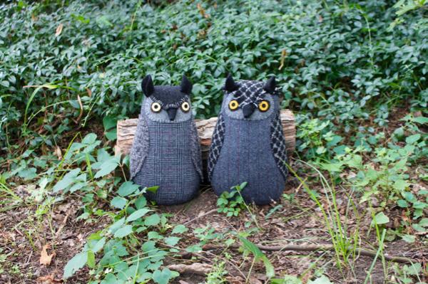 8-17-owl 1 - 1