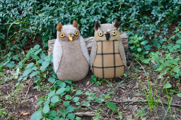 8-19-owl 4 - 1 (6)