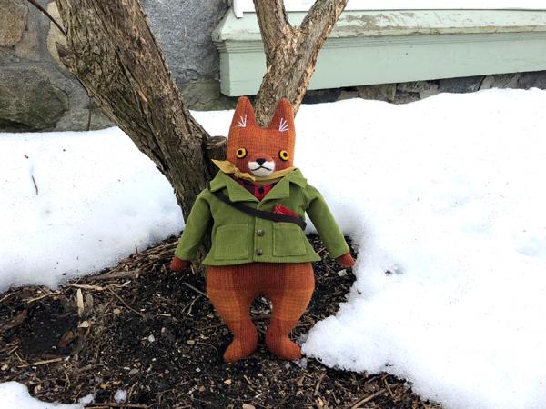 3-30-fox 6 - 5