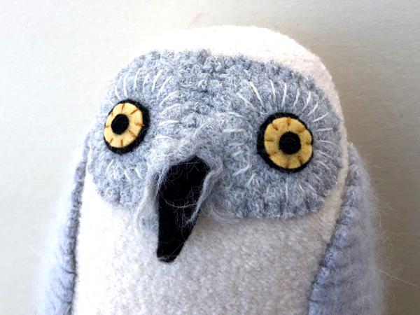 4-27-owls 10 - 1