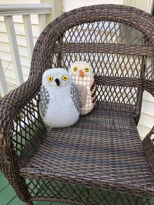6-29-brown owl 1112 - 7