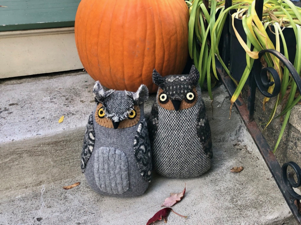 10-24-owl 11 12 - 3